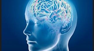 Как определить склад мышления