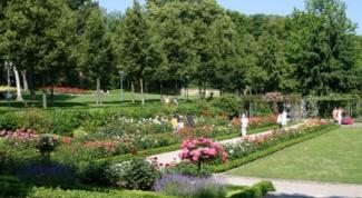 Достопримечательности Берна: Сад роз