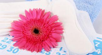 Правила использования женских гигиенических прокладок