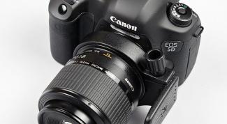 Лучшие macro объективы Canon