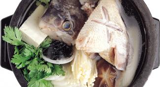 Чем уха отличается от рыбного супа