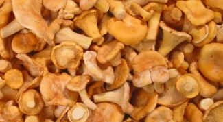 How to pickle chanterelles