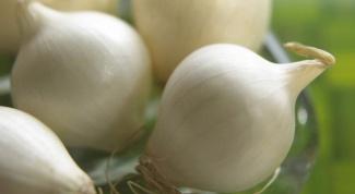 Чем ценен белый лук