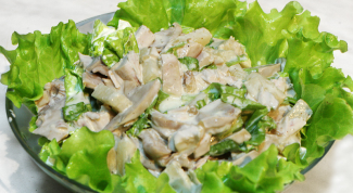 How to make a delicious salad with champignons and chicken