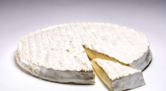 В чем отличие сыра камамбера от бри