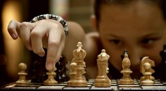 Шахматы - это спорт или хобби?
