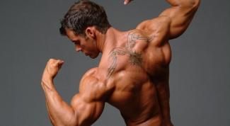 Как накачать мышцы груди, плеч, пресса в домашних условиях