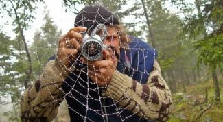 Что такое оптический зум и цифровой зум