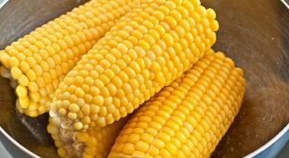 Как правильно варить кукурузу