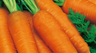 When to sow carrots for winter