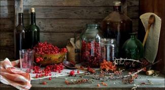 Рецепты вкусных наливок