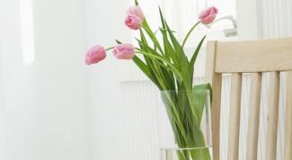 Как дольше сохранить срезанные тюльпаны в вазе