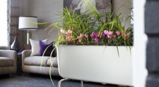 Как сделать миниатюрный сад в небольшом передвижном контейнере?