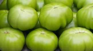 Как засолить зеленые помидоры в бочке
