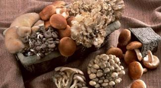 Рецепт маринада для грибов