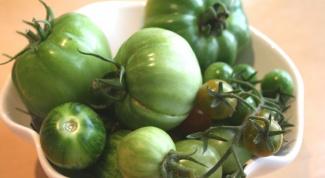 Как посолить зеленые помидоры