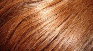 Какое выбрать хорошее средство от сечения кончиков волос