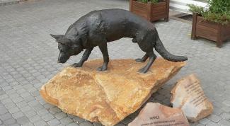 В каких городах поставлены памятники животным