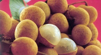 How to grow longan in home