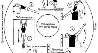 В чем заключается эффективность круговой тренировки