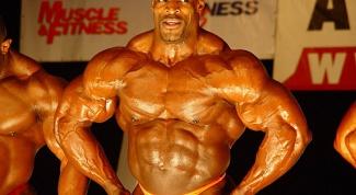 Какие мышцы относятся к антагонистам