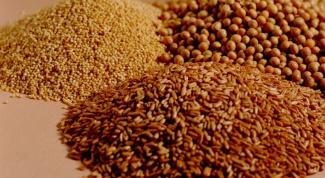Как приготовить пшеничную кашу с грибами