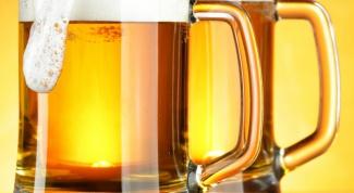 Какое пиво стоит попробовать в Чехии
