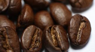 Все о кофе: что такое арабика