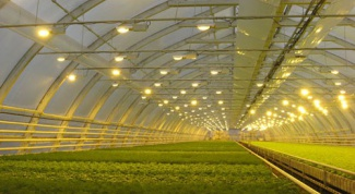 Почему мигает энергосберегающая лампочка
