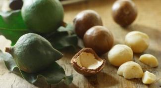 Масло макадамии в косметологии