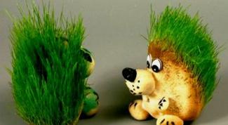 Как сделать ежика травянчика своими руками