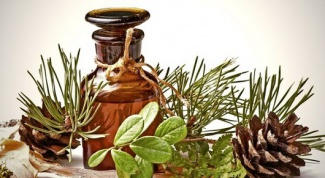 Простой рецепт приготовления пихтового масла