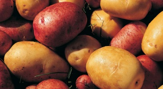 Лучшие сорта раннего картофеля
