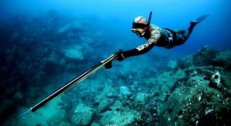 Как выбрать снаряжение для подводной рыбалки