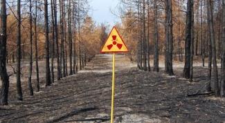 Последствия катастрофы на Чернобыльской АЭС