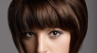 Женские стрижки: паж или сессун