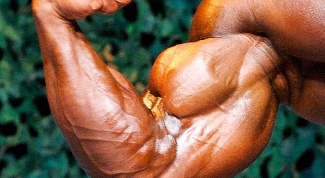 How quickly pump up the biceps