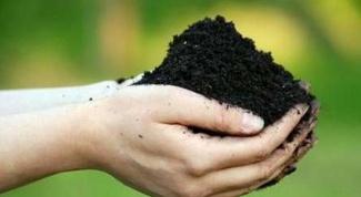 Канадская технология обработки почвы