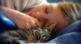 Несколько советов для хорошего сна