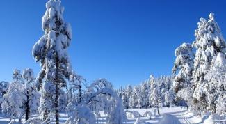 Оймякон - самое холодное место в мире