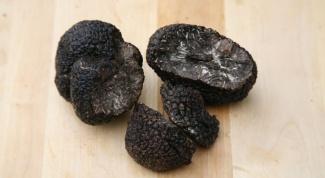 Famous delicacies: mushrooms truffles