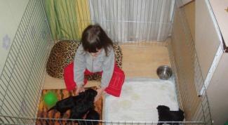 Как сделать манеж для щенков