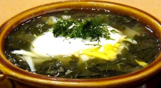 Как приготовить вкусный зеленый борщ с щавелем