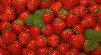 How to grow strawberries from seeds at home