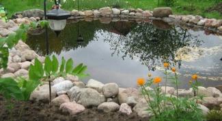 Очистка искусственных водоемов на участке