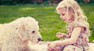 Польза дружбы детей и домашних животных