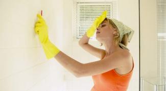 Как убрать плесень со стены