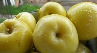 Как солить яблоки антоновка