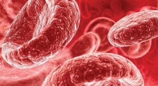 Пониженный гемоглобин: причины и последствия