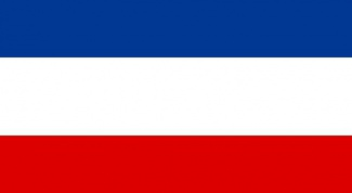 Why do Slovenia and Slovakia, the flag is similar to Russian